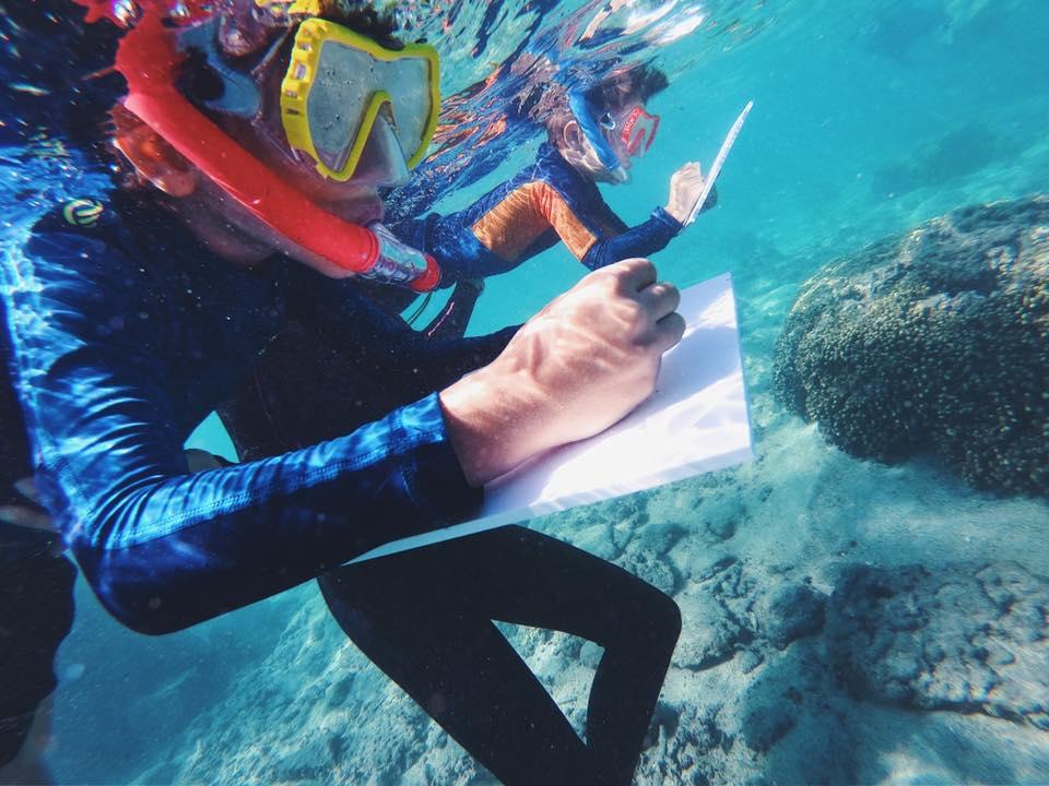dessiner sous l'eau - réunion