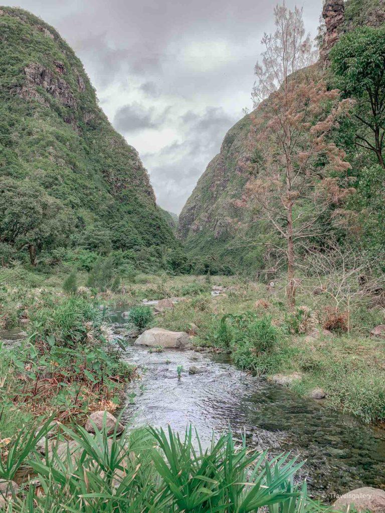saint-denis de la réunion rivière