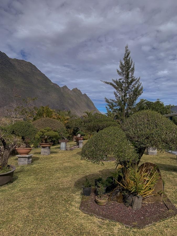 cirque de cilaos hôte jardin créole