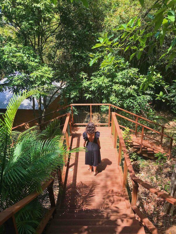 cabane dans les arbres à la réunion 974